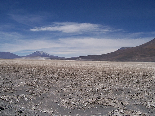 Salar de Ascotan in the foreground.
