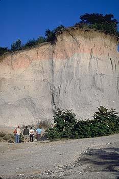 Rhyolite caldera complexes